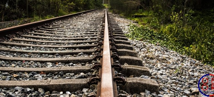 Silk Road railways: more coordination required in the EU