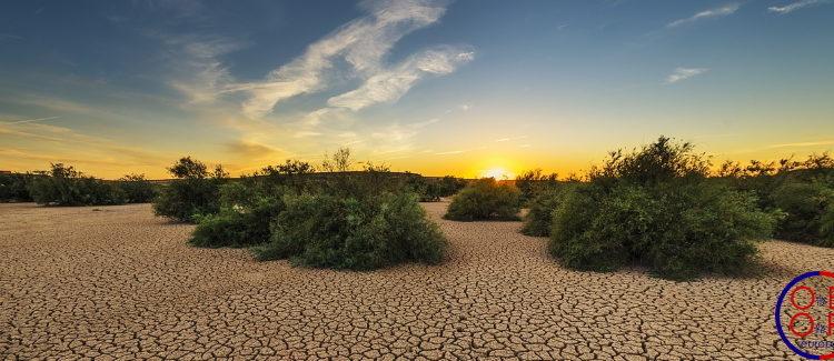 Le défi environnemental de la BRI