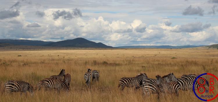 Les obstacles à la BRI au Kenya